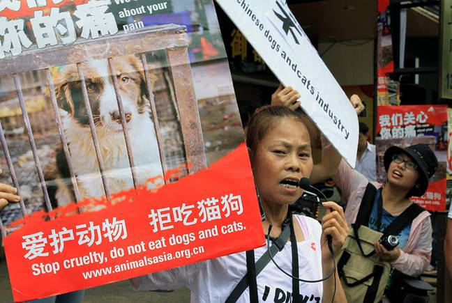 Animal rights activists protest against eating dog meat outside a dog meat restaurants in Yulin, southwest China's Guangxi province on June 21, 2013 prior to dog meat ban.