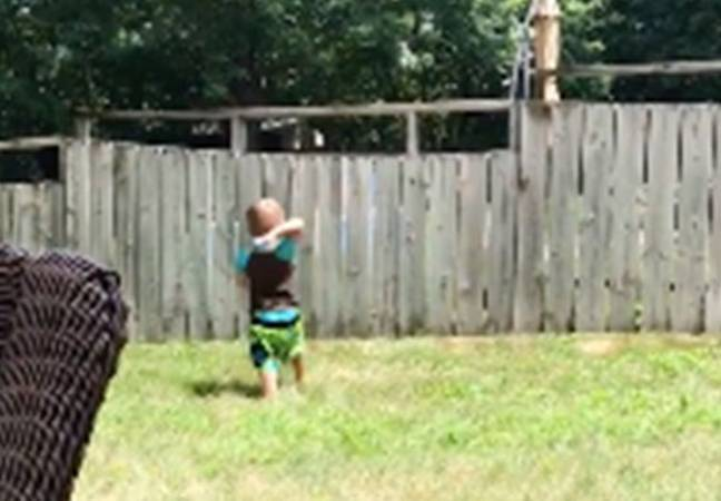 Toddler plays fetch with dog over fence