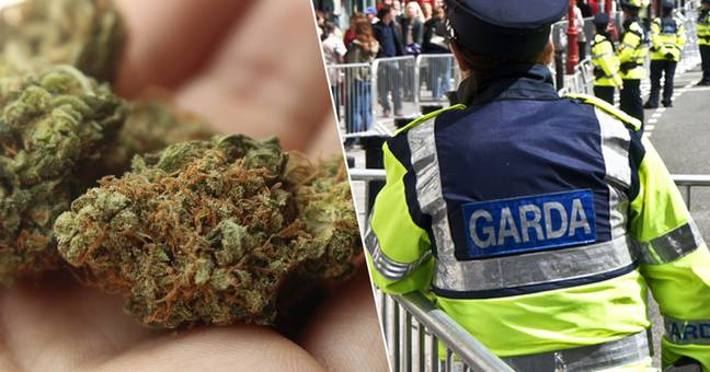 Man took his cannabis to police to complain about quality