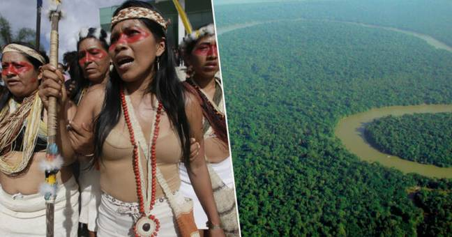 Amazon tribe has won lawsuit against oil company.