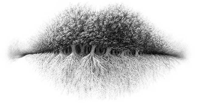 What You See In This Photo Says A Lot About Your Personality trees lips roots psychology wake up your mind