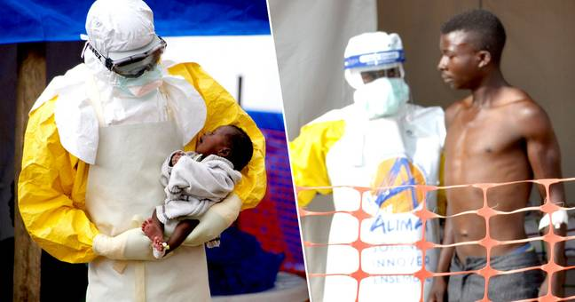 Ebola can no longer be called an incurable disease after drug trial successes