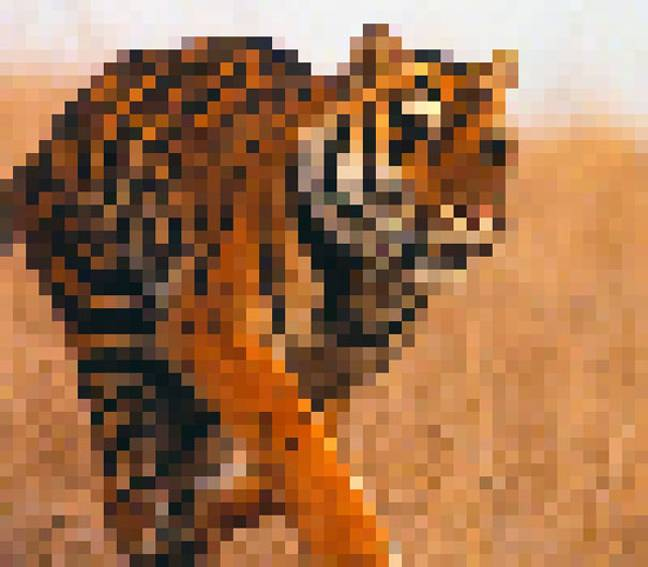 Photos Of Species Made Up Of As Many Pixels As There Are Animals Still Alive