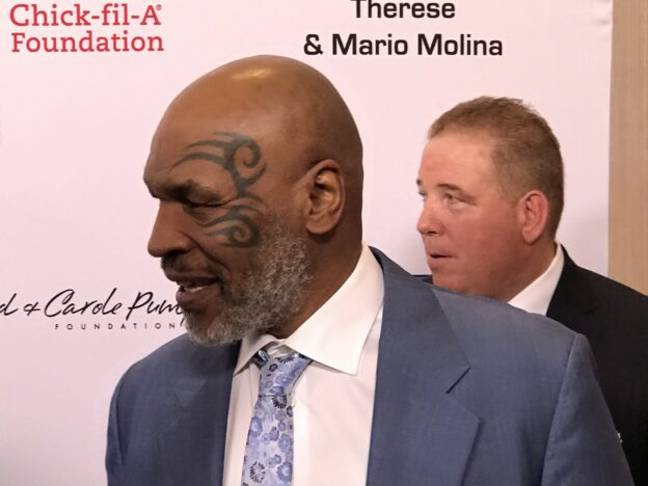 Mike Tyson Tiger