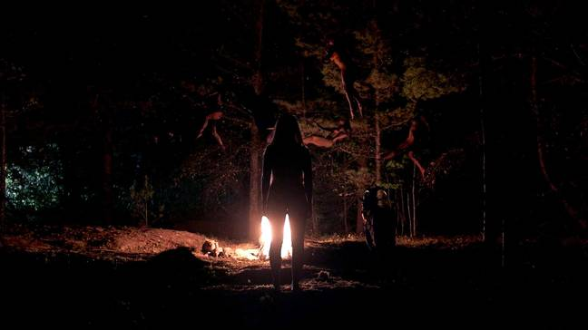 The Witch 2015 Film Cult