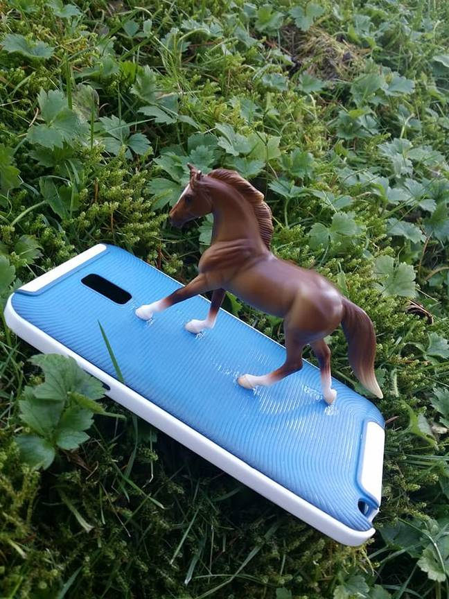horse on phone photobombs pictures