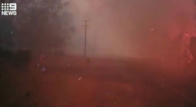 Firefighters' Footage Shows How Bushfires Can Overrun Area In Minute