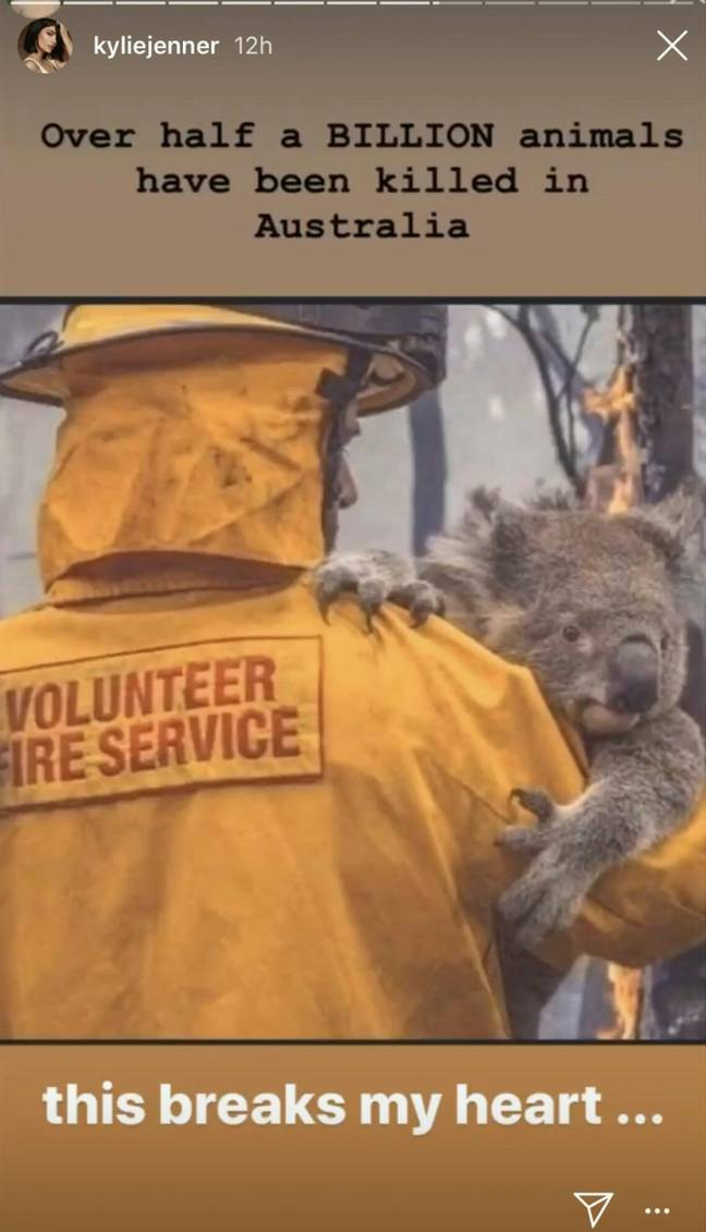 Kylie Jenner posts story about loss of animals in Australia bushfires