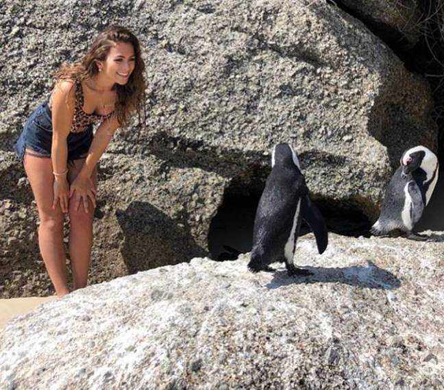 Influencer posing with penguin on Boulders Beach