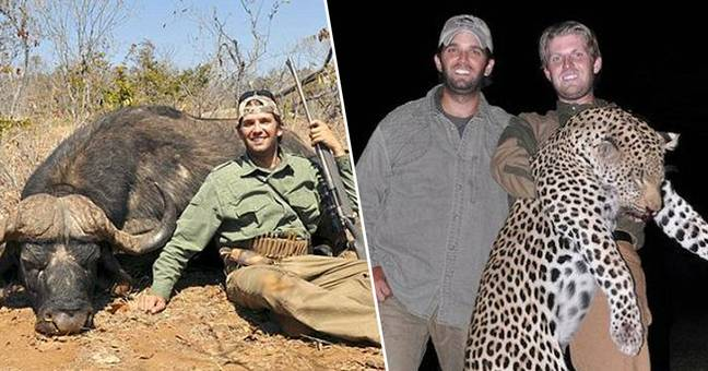 Trophy Hunting Convention Auctioning 'Dream Hunt' With Donald Trump Jr.