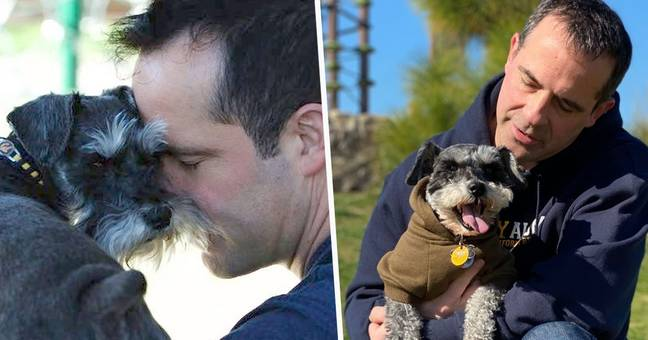 Man Cashes Out 401k To Pay $45,000 For Surgery To Save His Dog's Life