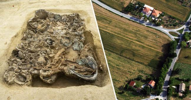 Huge Treasure Trove Hoard Unearthed In Lost Pre-Roman Royal Tomb