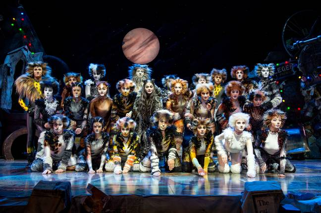 Cats the musical opens in Hong Kong's Lyric theatre
