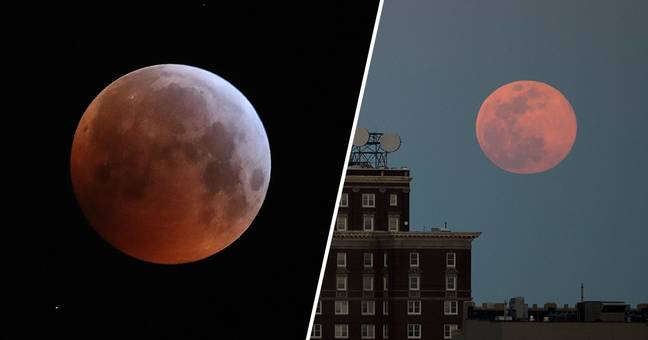 Huge Pink Supermoon To Light Up Sky Next Week