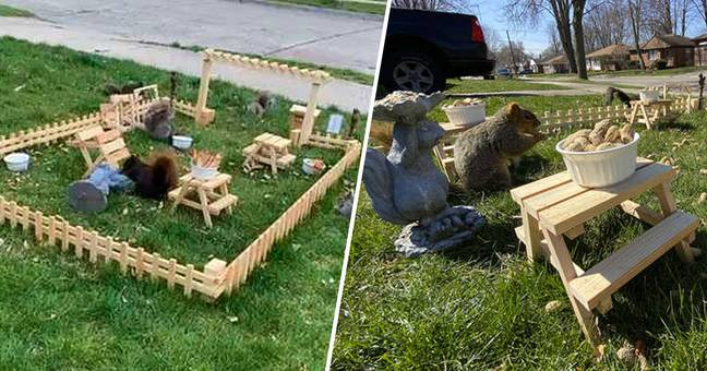 Guy Builds An Entire Tiny Restaurant For Animals In His Yard In Detroit