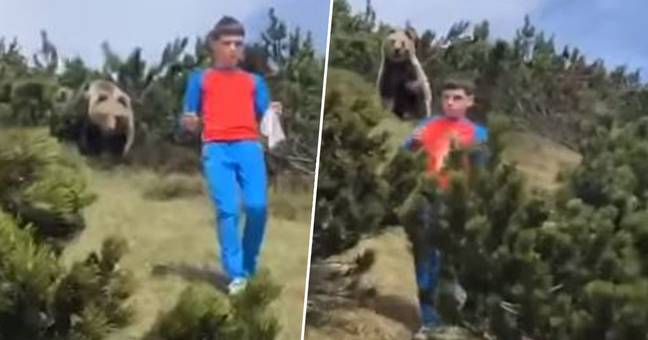 Italian Boy, 12, Does Exactly What You Should Do When Being Stalked By Bear