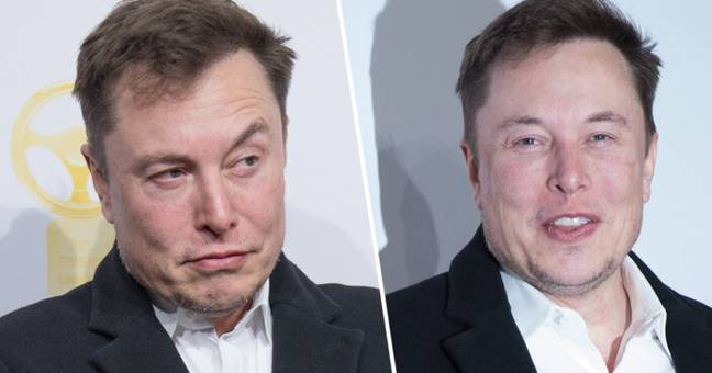 Elon Musk Is Selling Almost All Of His Physical Possessions Including His Houses