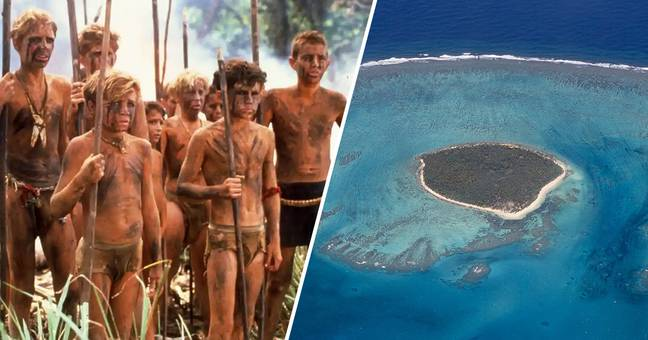 real life lord of the flies 1