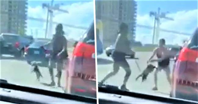 Woman Uses Pet Dog On Leash As Weapon In Shocking Road Rage Video