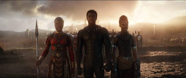 Black Panther Endgame 2