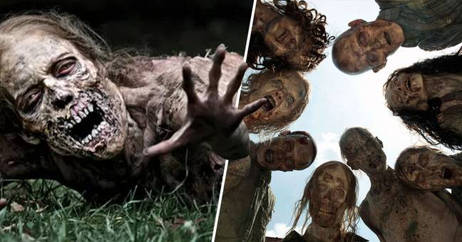 TV Execs Originally Didn't Want Any Zombies In The Walking Dead
