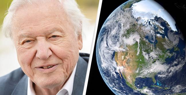 David Attenborough Tells Us The Two Things That Can Be Done To Save The Planet