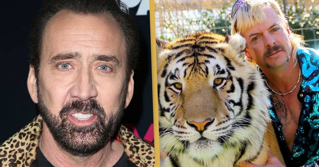 Nicholas Cage's Joe Exotic TV Show Is Coming To Amazon Prime
