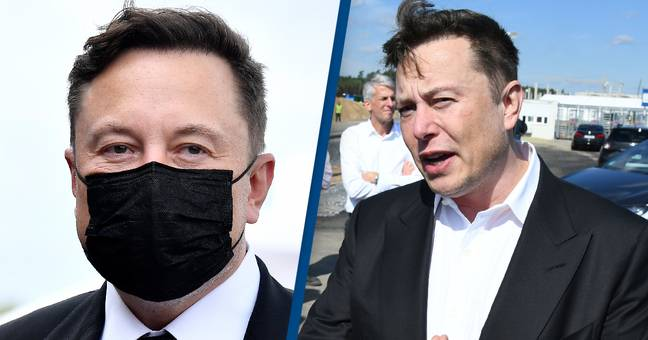 Elon Musk Says We Must Become 'Multi-Planet Species' Before The Sun Engulfs Earth