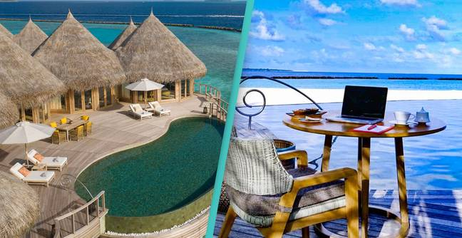Maldives Resort Offering Private Beach For People Working From Home