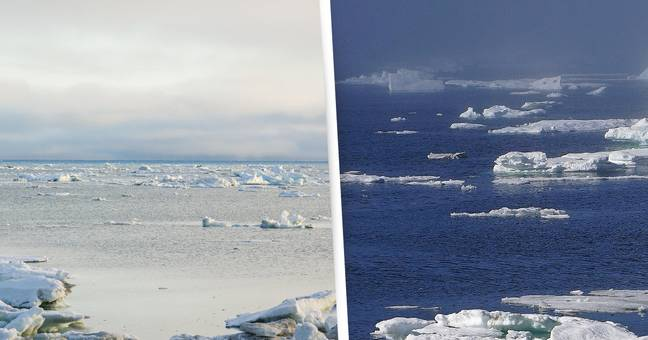 Arctic Sea Ice Falls To Second-Lowest Level Ever After Year Of Heatwaves