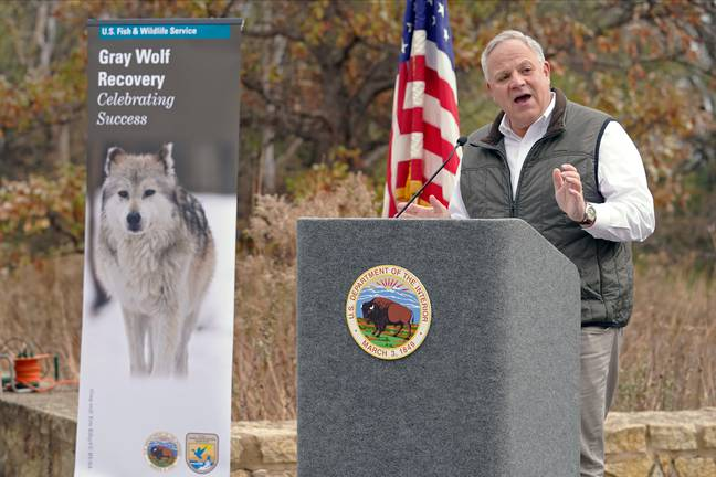 David Bernhardt announces wolves stripped of protections