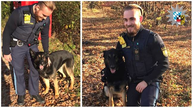 Police rescue second dog in Germany
