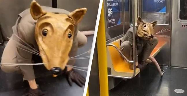 Man Dressed As Giant Rat Takes New York Subway Mask Requirement To Next Level