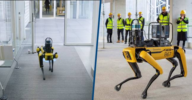 Boston Dynamics' Robot Dog Involved In Construction Of Apple's New London HQ