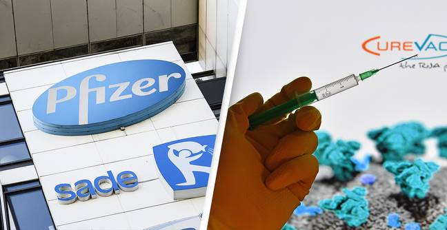 Scientist Behind Pfizer Vaccine Says It Can End The Coronavirus Pandemic