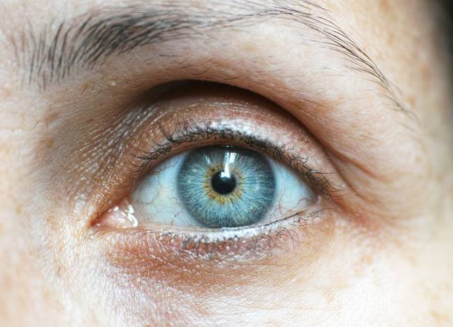 All Blue-Eyed People Are Related To One Ancestor Who Lived 6,000 Years Ago
