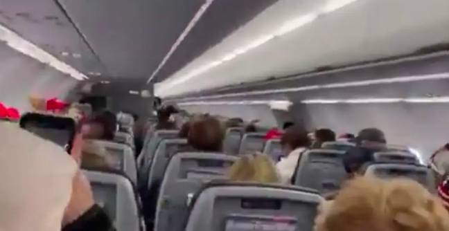 American Airlines MAGA Flight
