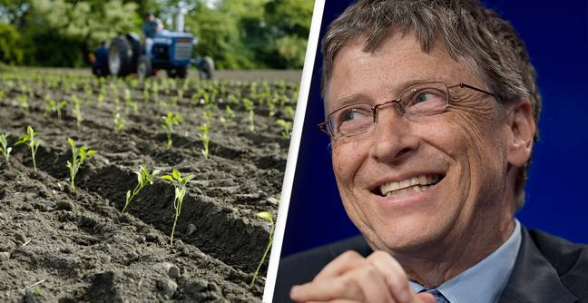 Bill Gates Is Now The Biggest Owner Of Farm Land Across Whole Of US