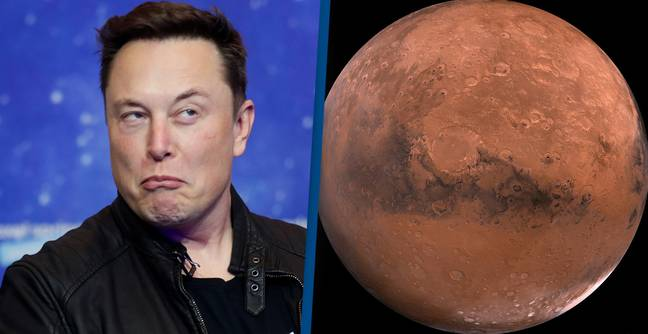 Elon Musk Selling All His Possessions To Show He's 'Serious' About Colonising Mars
