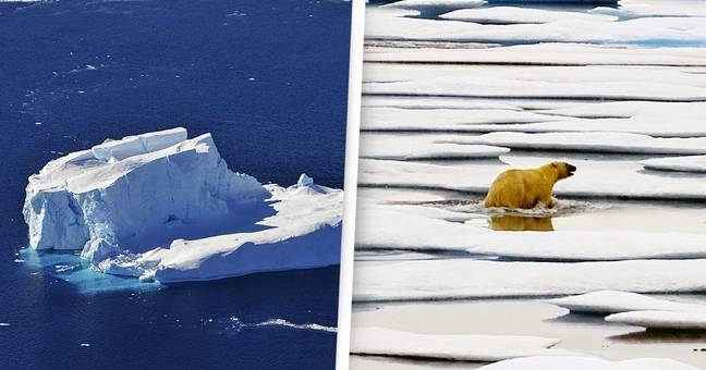 Earth Is Losing More Than 1.2 Trillion Tons Of Ice Per Year