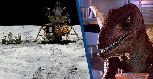 There Are Probably Bits Of Dinosaur On The Moon