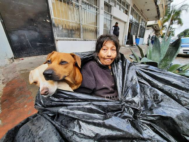Homeless woman refuses to go to shelter so she can stay with dogs