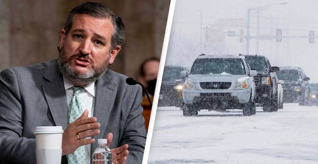 Ted Cruz Rating Crashes 23% After His Disastrous Trip To Cancun During Texas Blizzard