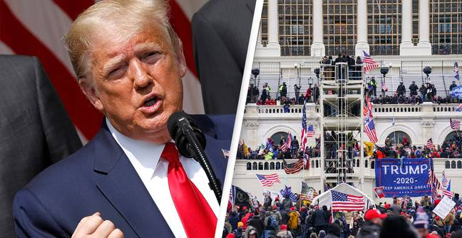 Trump's Lawyers Claim He Did Not Incite Riots By Saying 'Fight Like Hell'