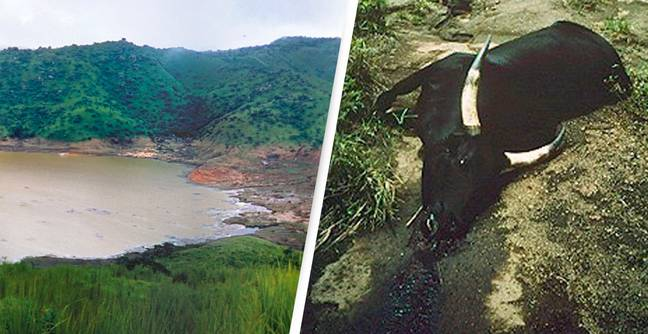 Lake Nyos Once Claimed More Than 1,700 Lives In A Single Night