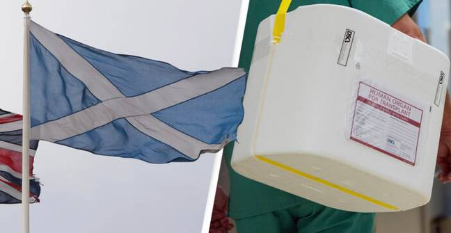 Scotland Switches To An Opt-Out Organ Donation System At Midnight Tonight