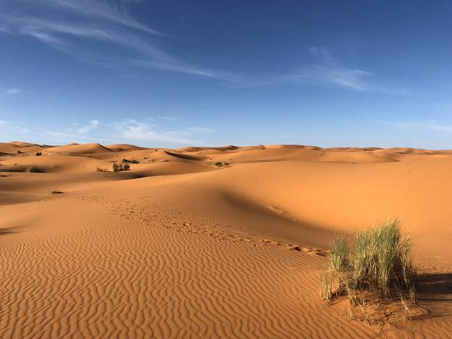 Chunk Of Protoplanet Older Than Earth Discovered In Sahara Desert