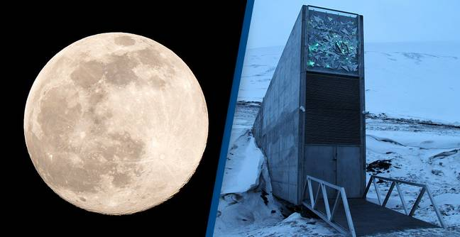 Scientists Want To Build An Underground Doomsday Vault On The Moon