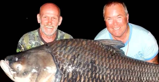 Mates Use Friend's Ashes To Catch 180-Pound Fish In His Memory