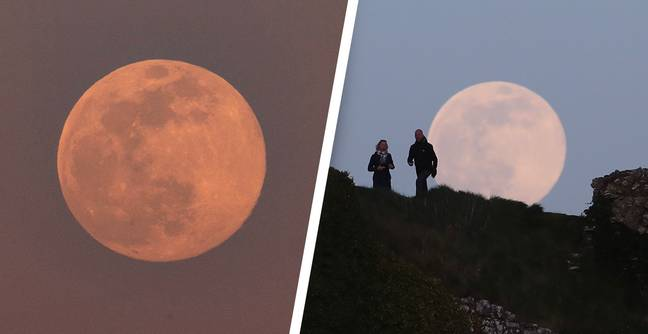 Rare Pink Supermoon Set To Light Up The Sky On Tuesday